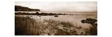Sepia Island Shores I