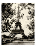 Eiffel Tower II - black and white
