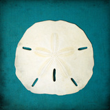 Sand Dollar II