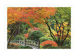 Japanese Garden I