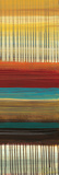 Drips & Stripes Panel II