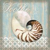 Spa Shells III
