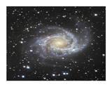 Spiral Galaxy in Antlia