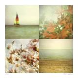 Coast Scenes 2
