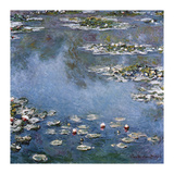 Waterlilies  1906
