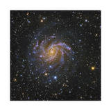 Spiral Galaxy in Cepheus