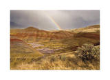 Painted Hills and Rainbow