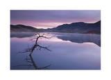 Painted Hills Lake at Dawn I