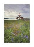 Patos Island Lighthouse I