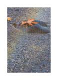 Sluslaw River Rain