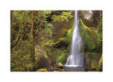 Marymere Falls II