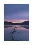 Painted Hills Lake at Dawn II