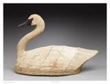 NC Canvas Swan