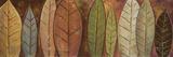 Tall Leaves II