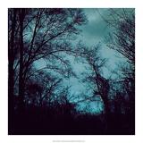 Nocturne IV