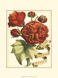 Ribbon Florals III