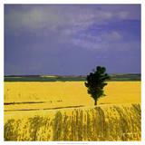 Farmscape I