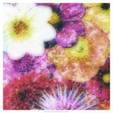 Floral Reef IV
