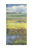 Shimmering Marsh I