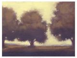 Calm Meadow II