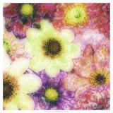 Floral Reef I