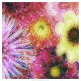 Floral Reef III