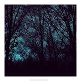 Nocturne III