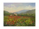 Umbrian Poppy Field