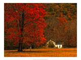 Farm House on a Autumn Morn'