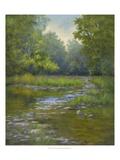 O'Bannon Creek