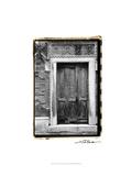 The Doors of Venice I