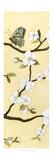 Eastern Blossom Triptych III
