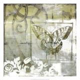 Non-Embld Butterfly & Ironwork III