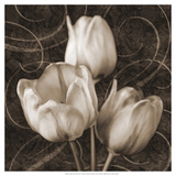 Tulip and Swirls II