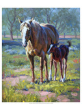 Made in the Shade Reproduction d'art par Jack Sorenson