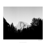 Half Dome in Trees