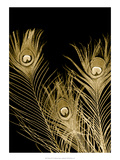 Plumes d'Or I