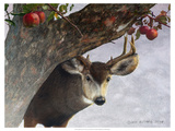 Apple Deer