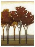 Arboreal Grove II