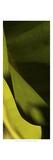 Leaf Detail III
