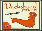 Dachshund Wieners