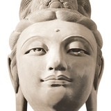Buddha&#39;s Head