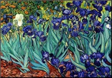 Iris, Saint-Rémy, vers 1889 Reproduction montée par Vincent Van Gogh