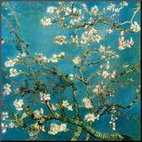 Branches d'amandier en fleurs, Saint-Rémy, 1890 Reproduction montée par Vincent Van Gogh