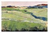 Colorful Landscape II
