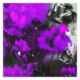 Purple Flowers I