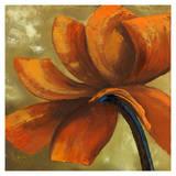 Orange Flower I