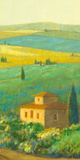 Tuscan Landscape II