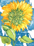 Sunflower no 1