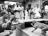 Puppeteer Bil Baird playing with a monkey  March 1962